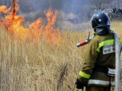 На территории Нижегородской области введен особый противопожарный режим