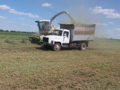 Господдержка для села: почти 2 миллиарда получили нижегородские аграрии