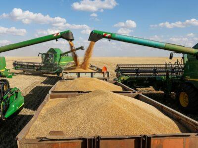В Нижегородской области убрано 90% посевных площадей зерновых