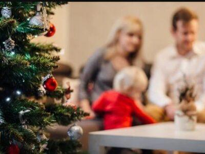 Областные итоги недели: Новый год будет, но по домам
