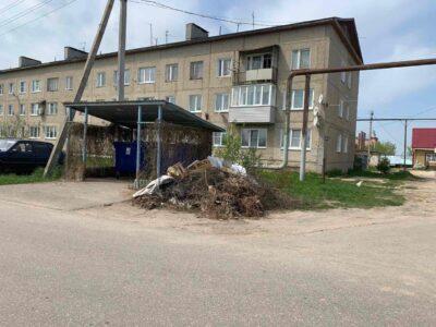До конца недели мусор должны убрать: поручение дал министр экологии Нижегородской области
