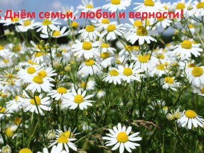 Поздравление нубернатора Нижегородской области Глеба Никитина с Днём семьи, любви и верности